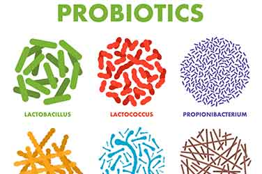 Probiotics in Food and Dietary Supplements