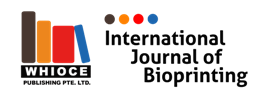 IJB Logo